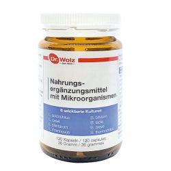 Mikroorganismen Dr. Wolz 120 Kapseln